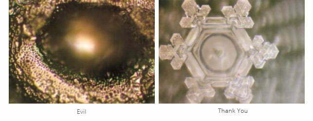 Thank You Emoto Water Crystals